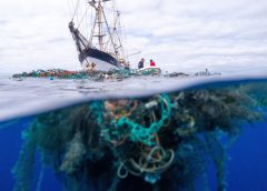 Ocean Voyages Institute Sets Record with Largest Open Ocean Clean-up in History